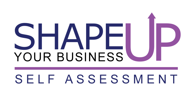 business self-assessment