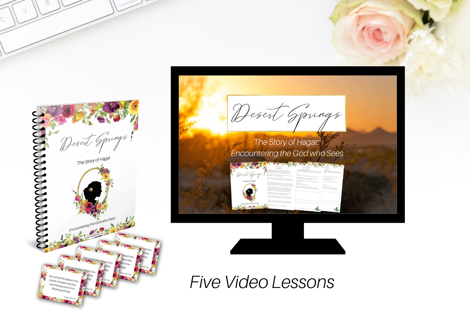 Bible Study Video Lessons