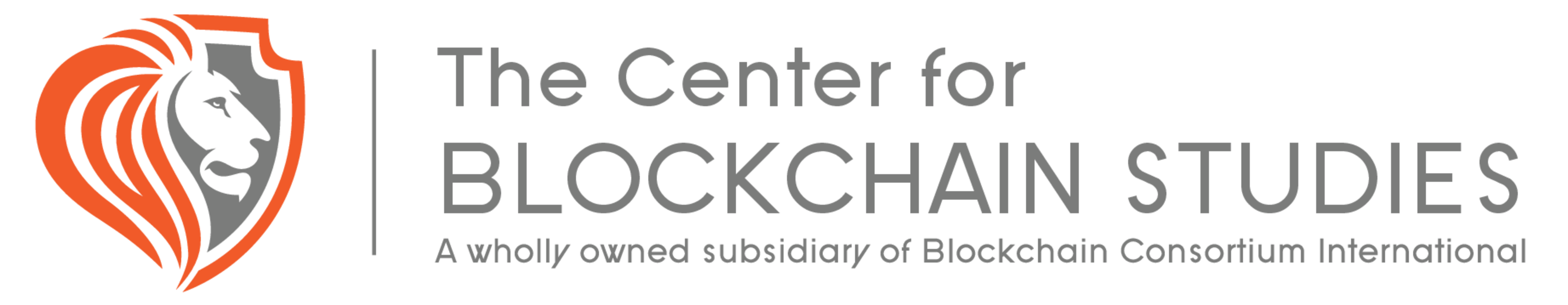Center for Blockchain Studies
