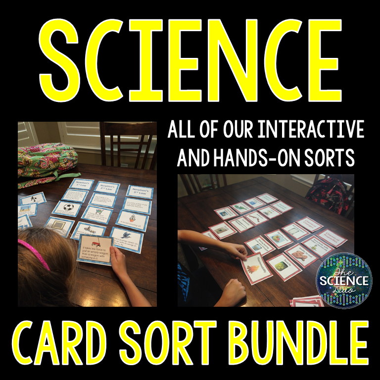 Card Sort Bundle