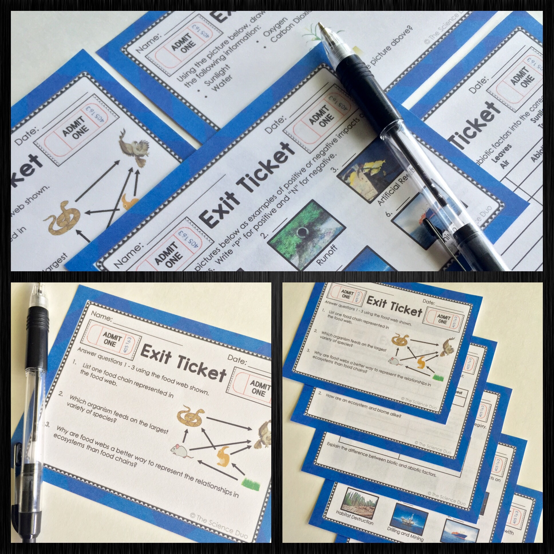 Ecosystems Exit Tickets