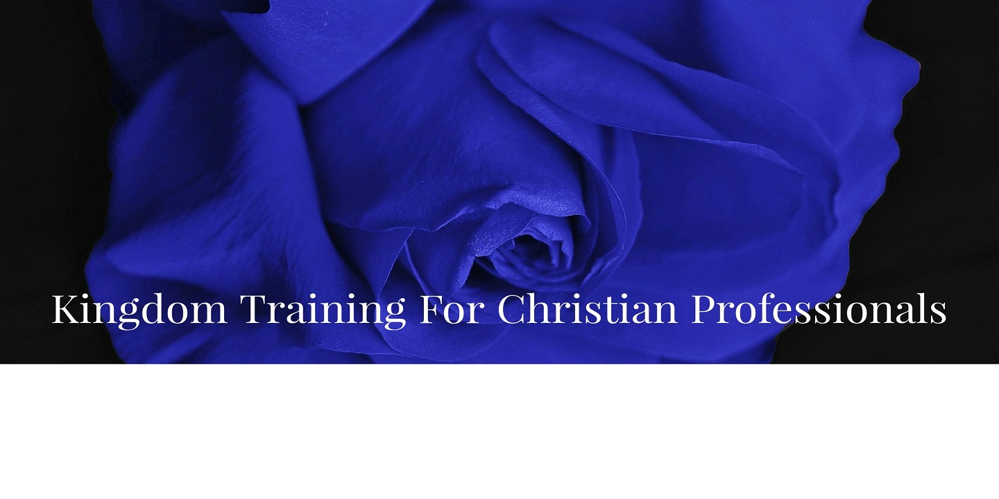 Kingdom Training For Christian Proffessionals