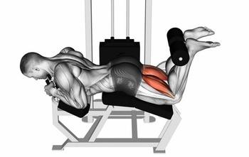 3 Key Muscles