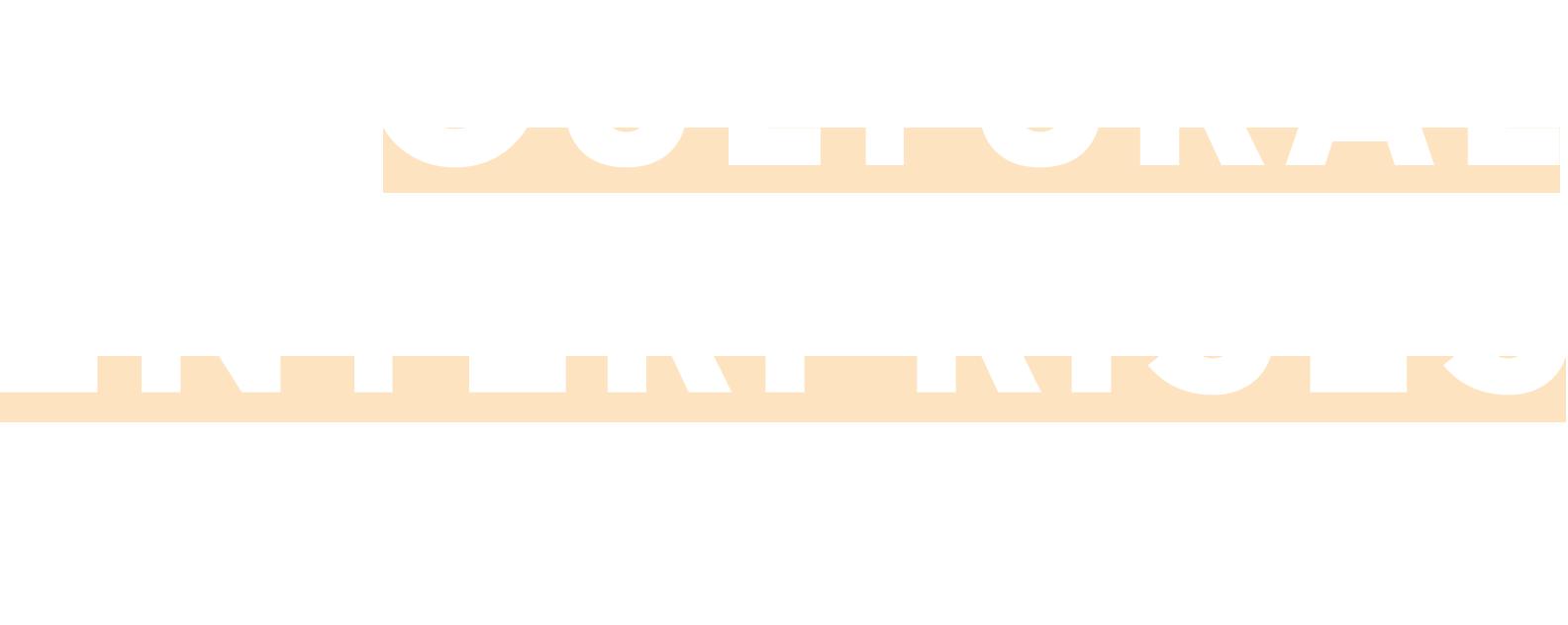 Cultural Enterprises Academy