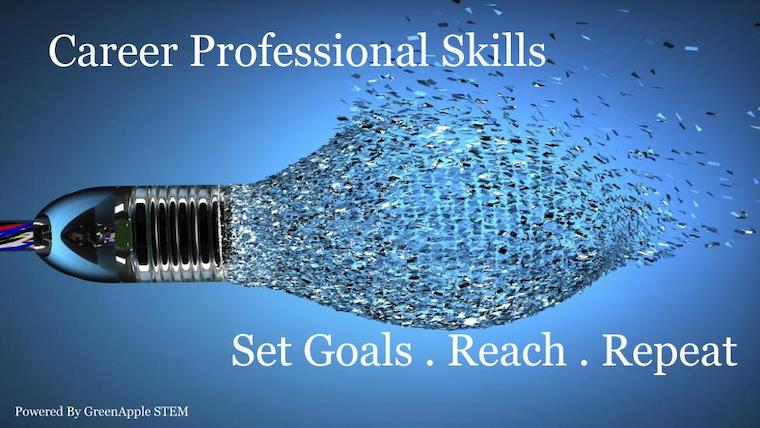 Career Professional Skills