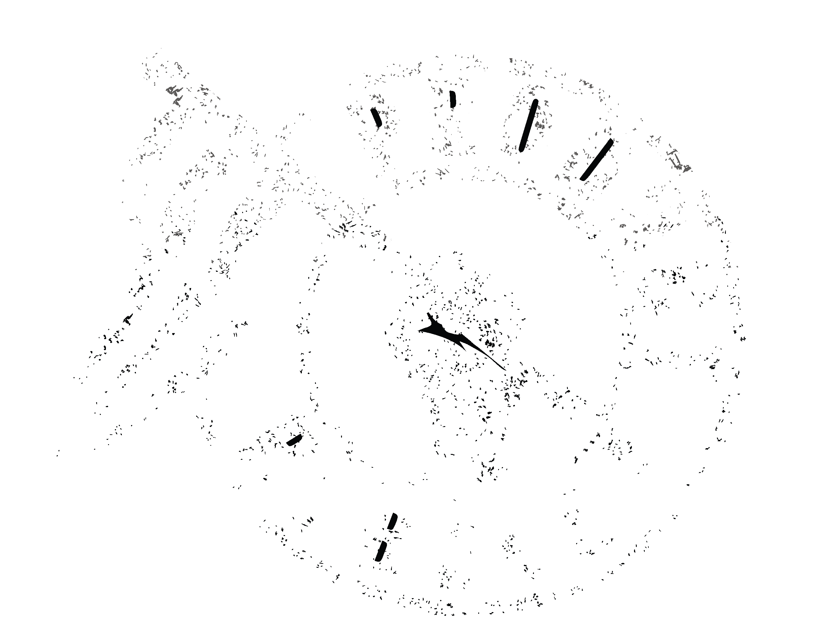 Product Rebels