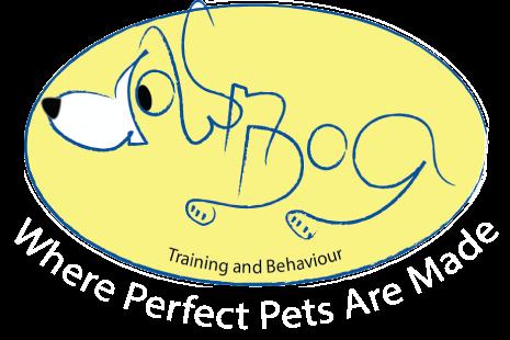 Down Dog Training