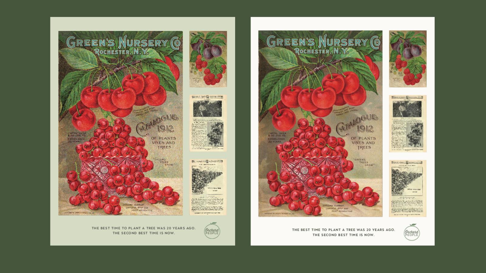 Fruit tree nursery poster