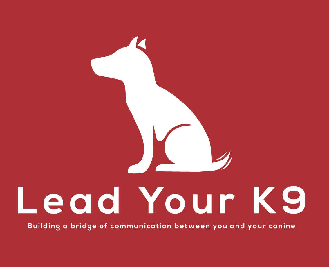 Lead Your K9