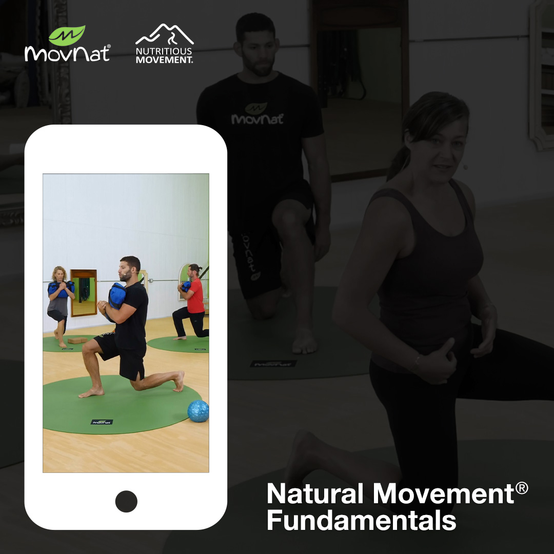 Transform Your Movement & Fitness and Build Real World Capability From The Ground Up