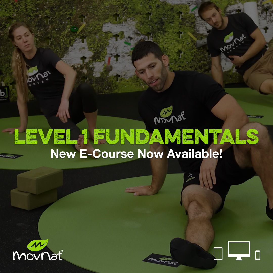 Regenerate Your Body Using Practical, Natural Movements that Enhance Fitness, Function, and Physical Capability