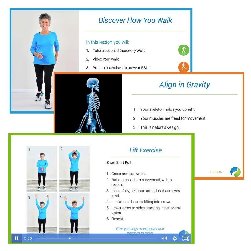 Part 1 Dynamic Walking Online Courses