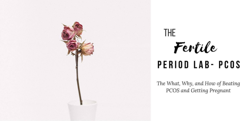 The Fertile Period Lab- PCOS