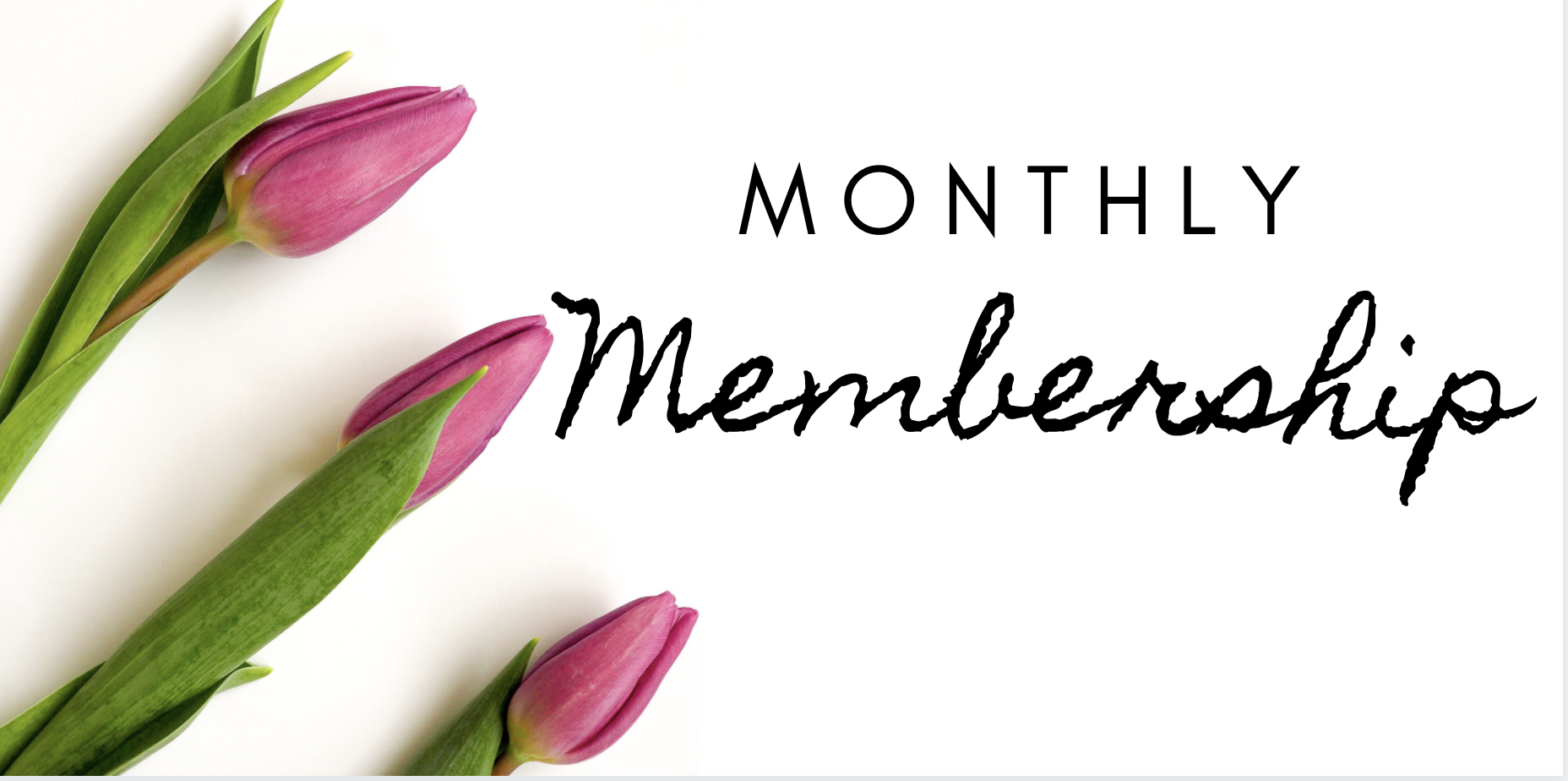 NEW MONTHLY MEMBERSHIP