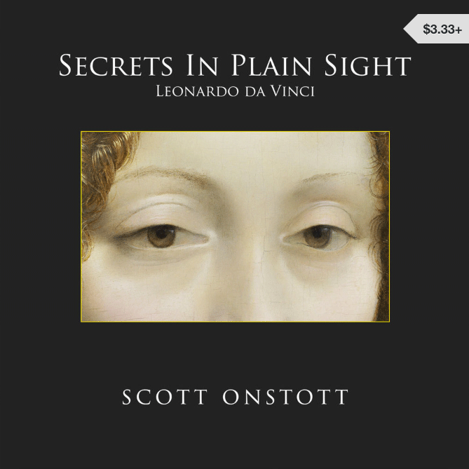 Secrets in Plain Sight book cover