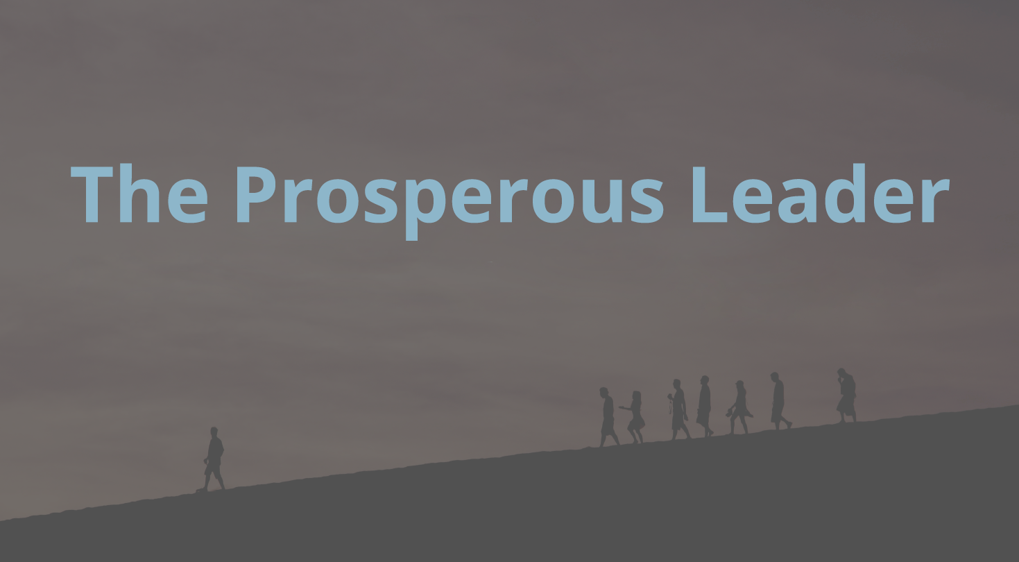 The Prosperous Leader Course