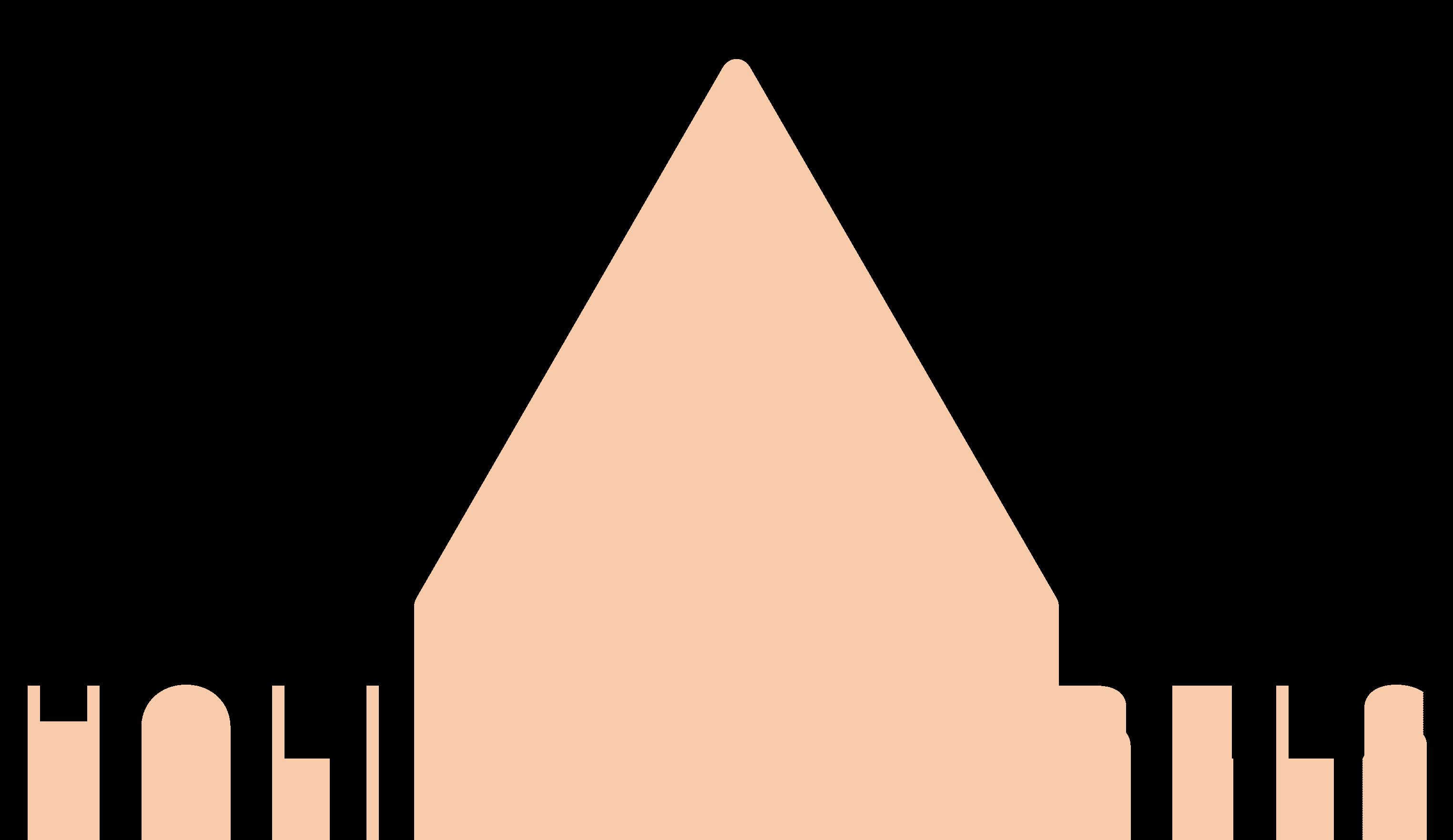 Holistic Rebels