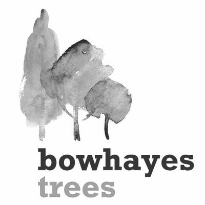 @bowhayestrees
