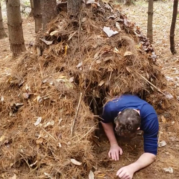 What is a Debris Hut?