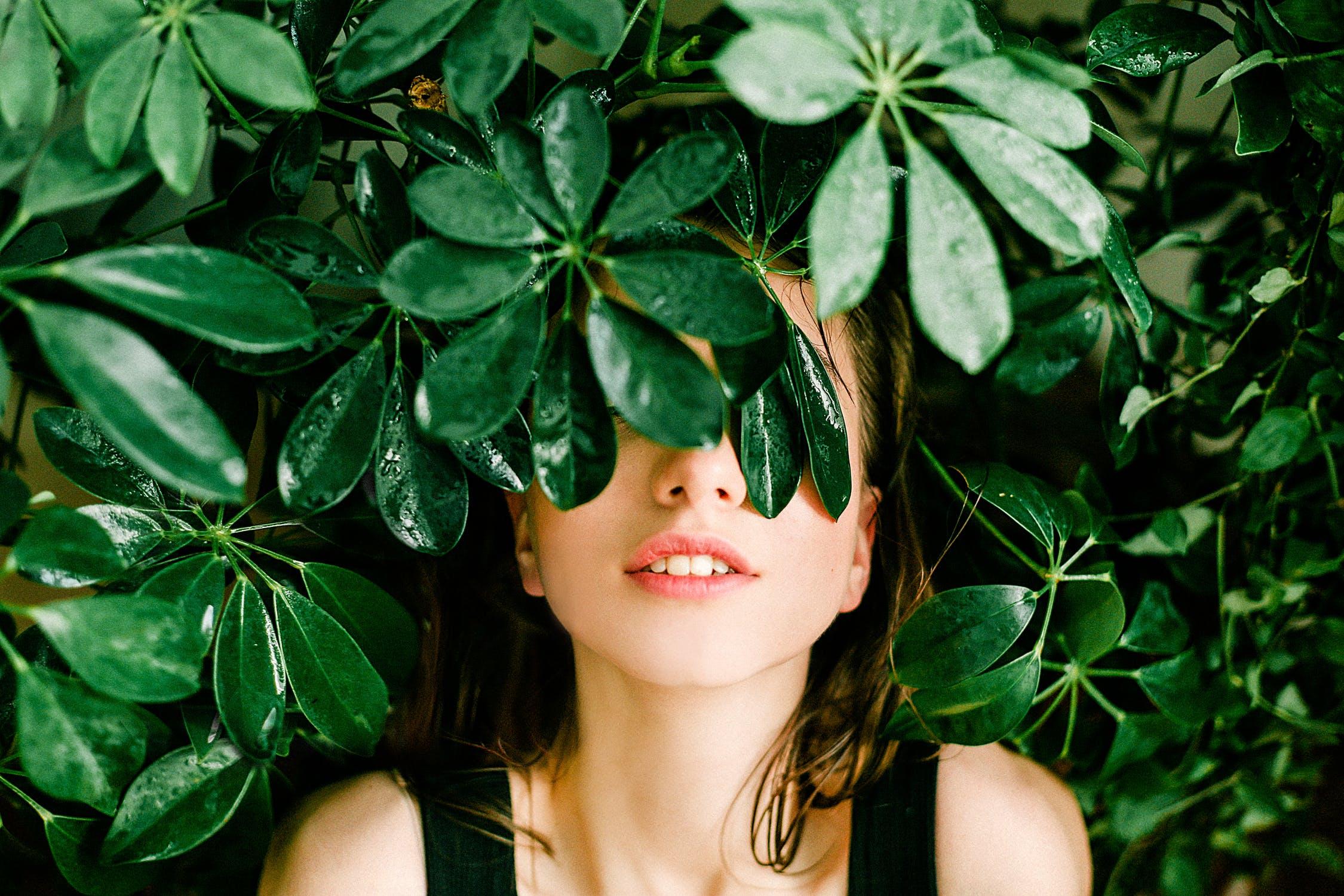 Découvrez l'univers fascinant des plantes avec les Âmes Fleurs!