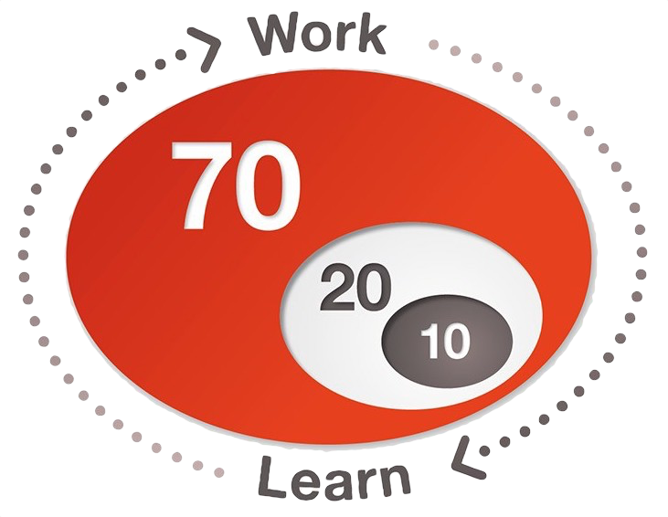 The 70 20 10 learning model illustration