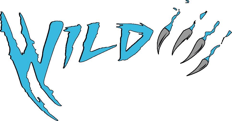 Wild Online Workouts