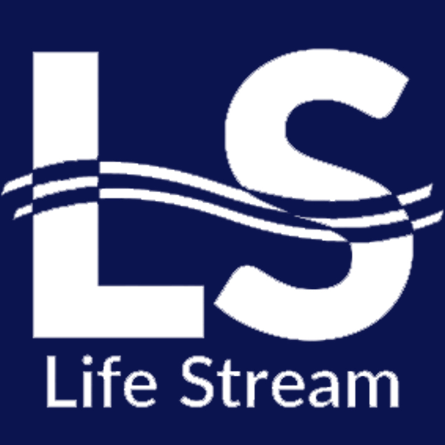 Life Stream Learning