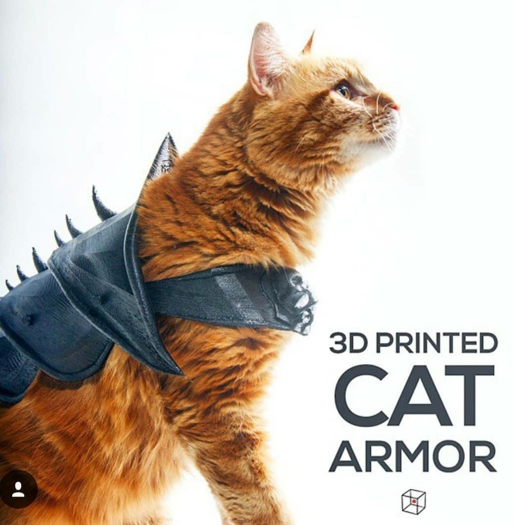 3D Printed Cat Armor