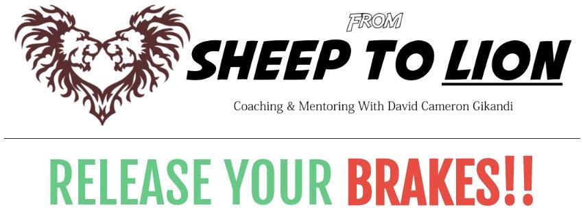 Coaching & Mentoring with David
