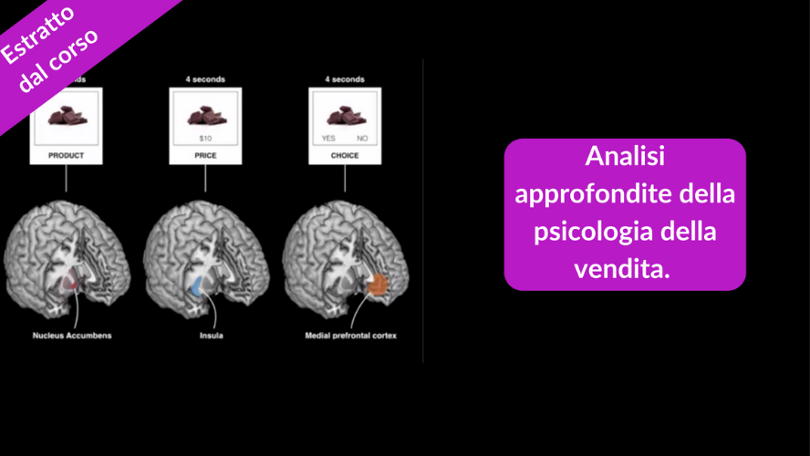 Estratto dal corso neuromarketing, analisi della psicologia della vendita