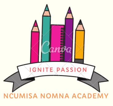 NN Academy Logo_Ignite Passion