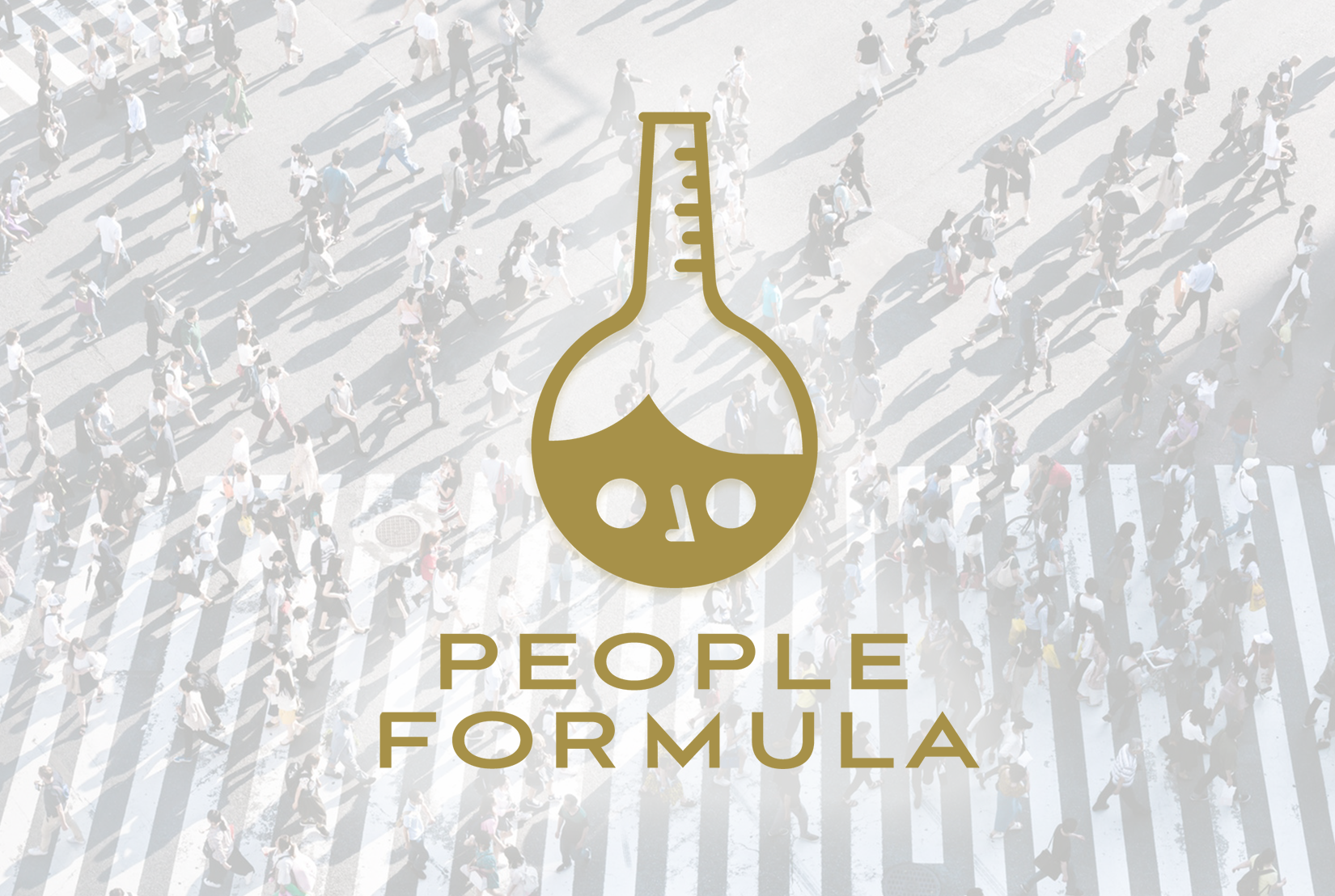 People Formula Online Learning