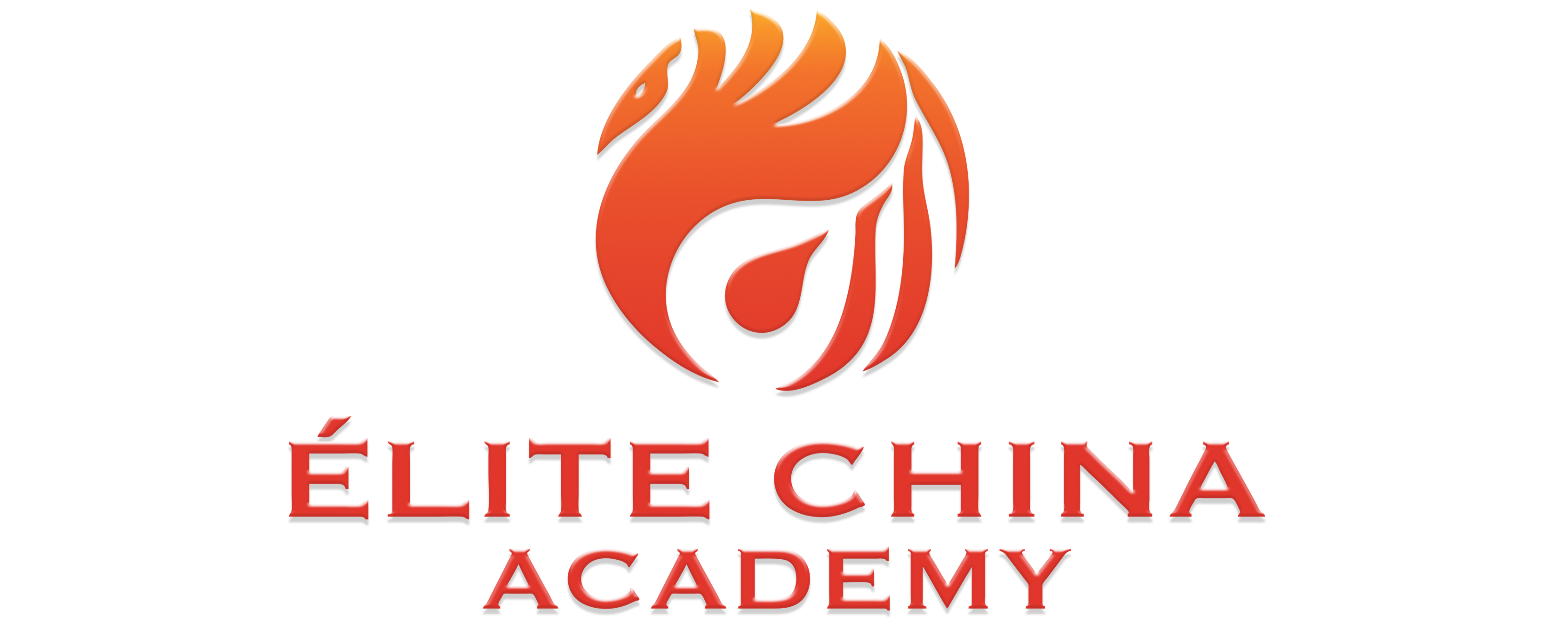 Élite China Academy
