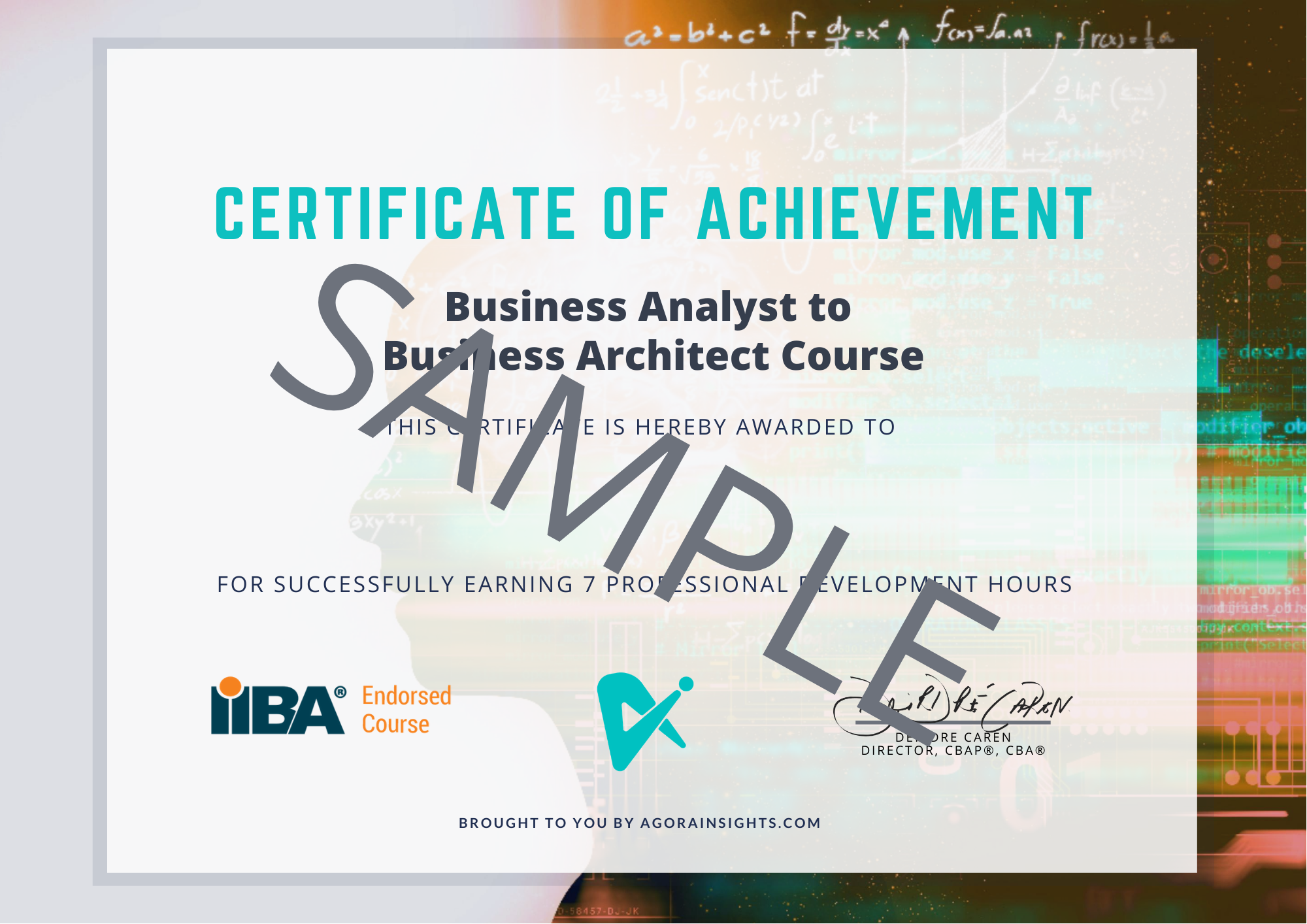 business architecture course