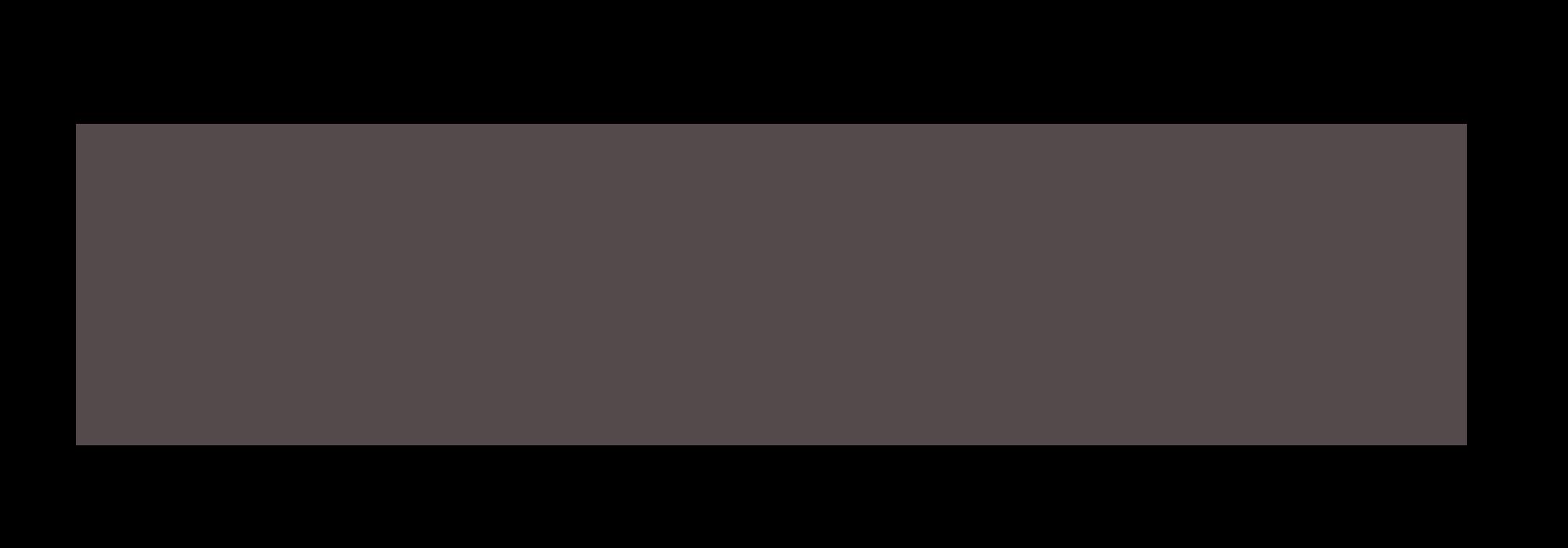 Wallifyer logo