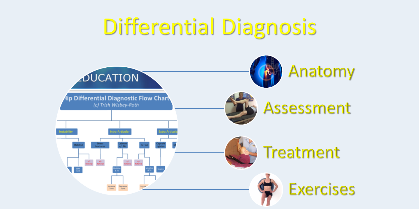 2 Day - Hip differential diagnosis and prescriptive exercise