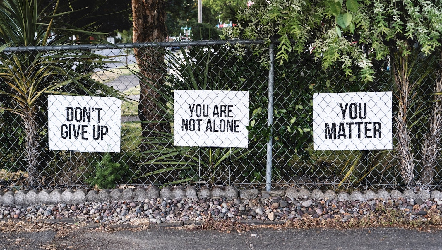 don't give up you are not alone you matter