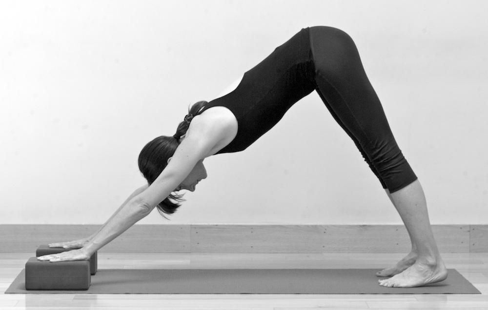 Leslie Howard Yoga - pelvic floor yoga teacher training online - downward dog with blocks