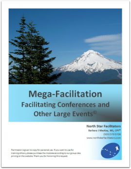 Facilitating Conferences and Other Large Events