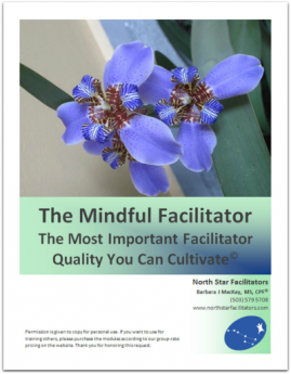 Important Facilitator Quality You Can Cultivate