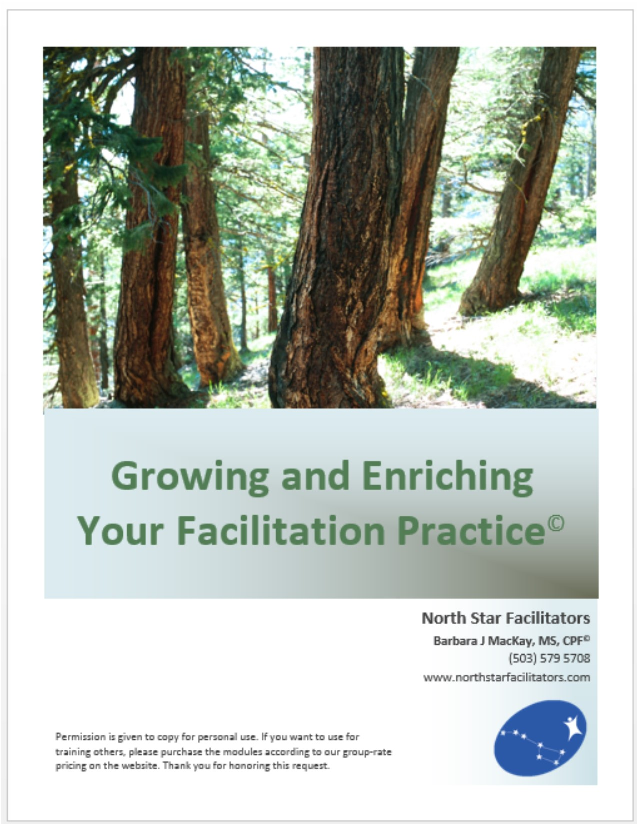 """How well is my facilitation business or practice working for me?"""