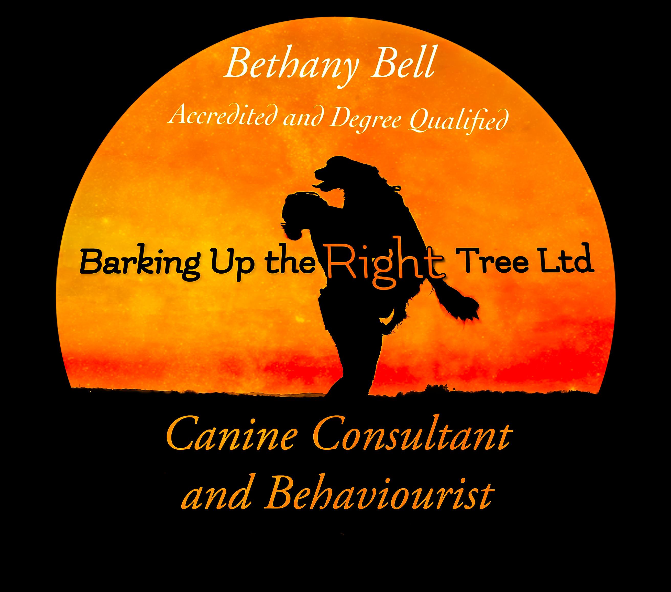 Barking Up the Right Tree Ltd Sunset Logo
