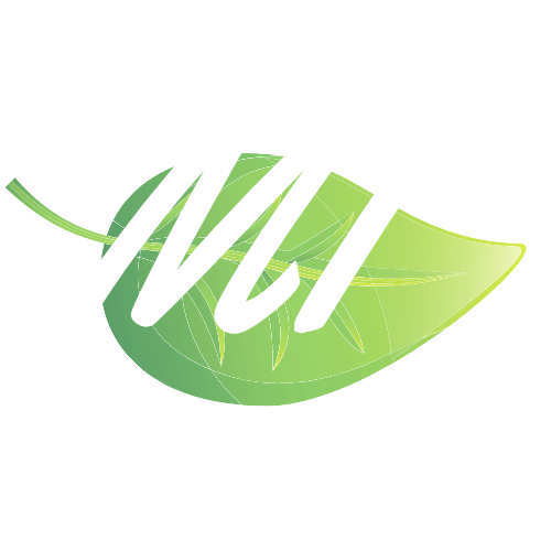 Midwest Information Exchange (MIx)