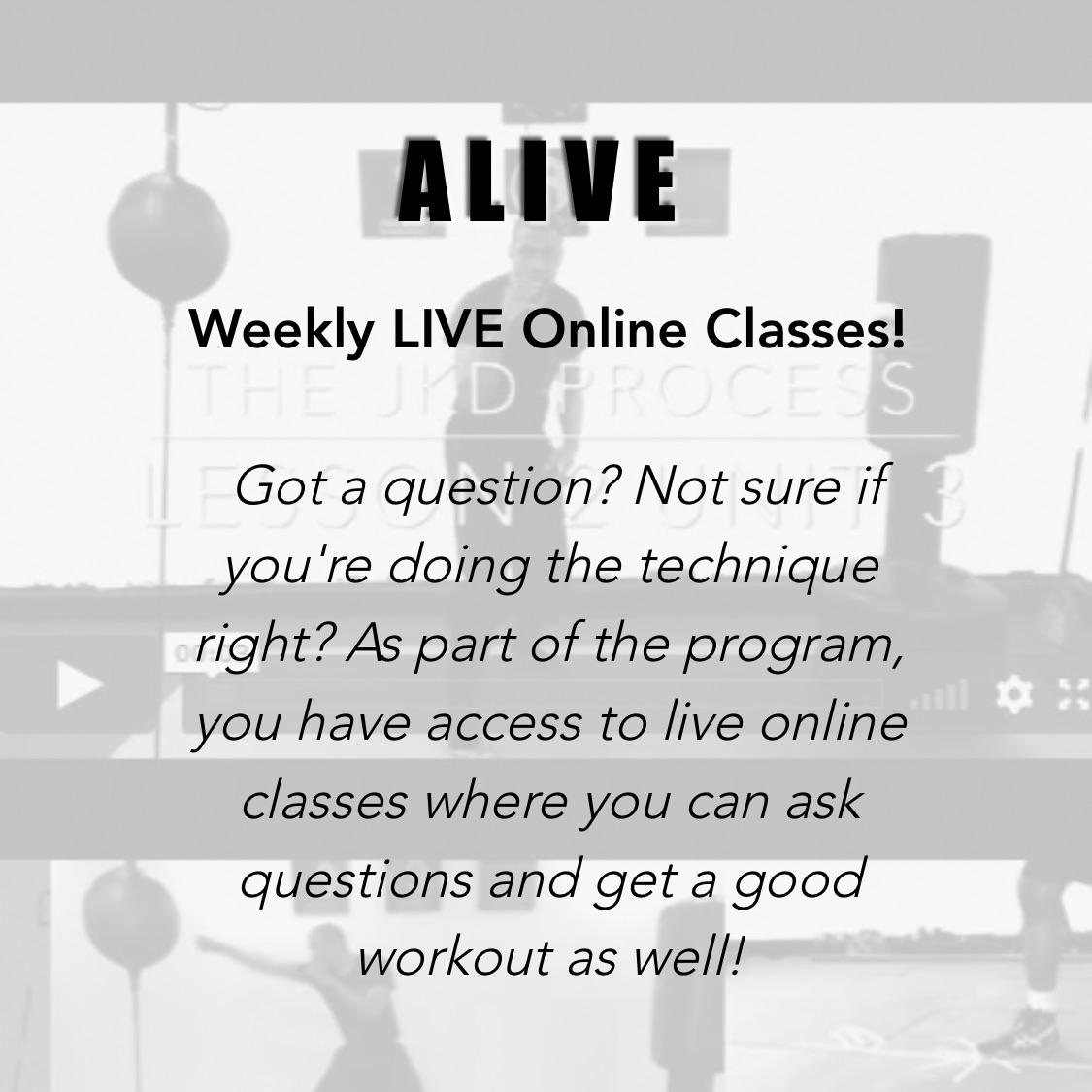 JKD Online Lessons