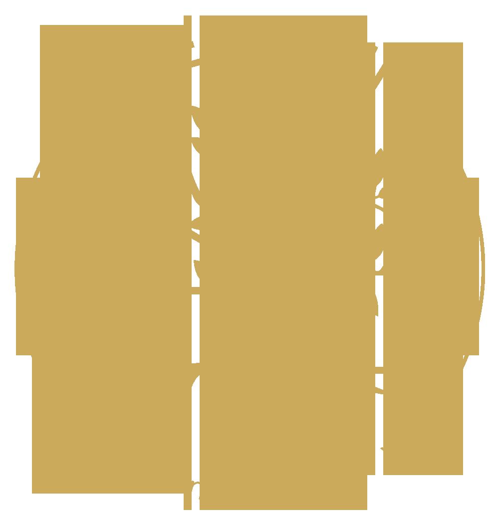 Organisme de formation Laurence Neige