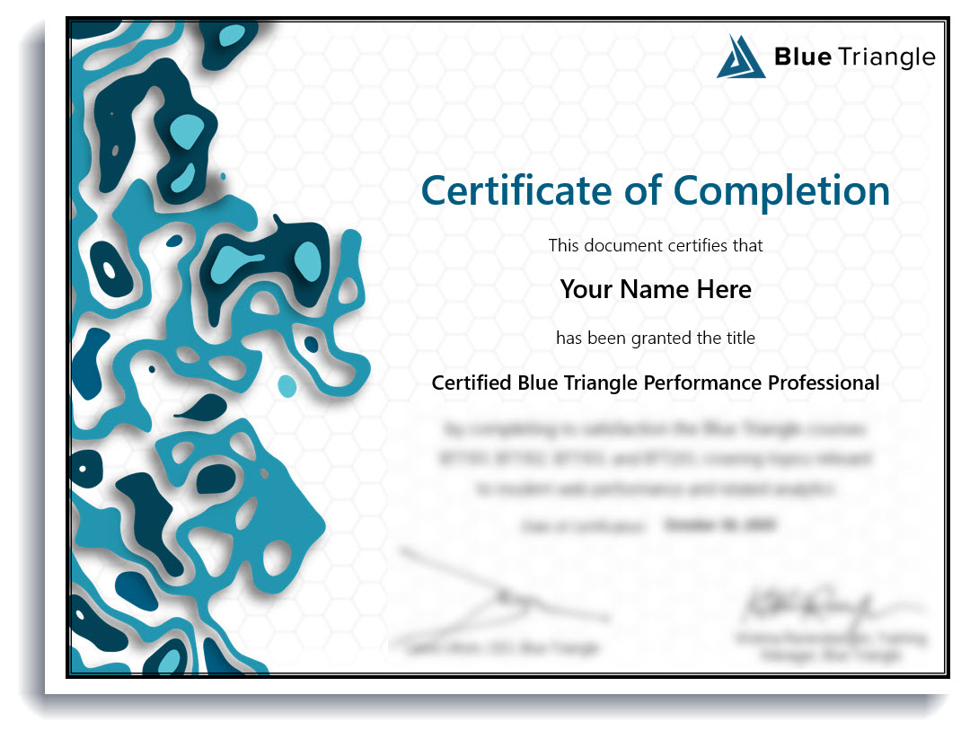 Blue Triangle Performance Professional Certificate
