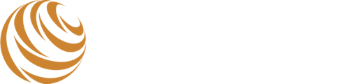TIGERS Success Series logo