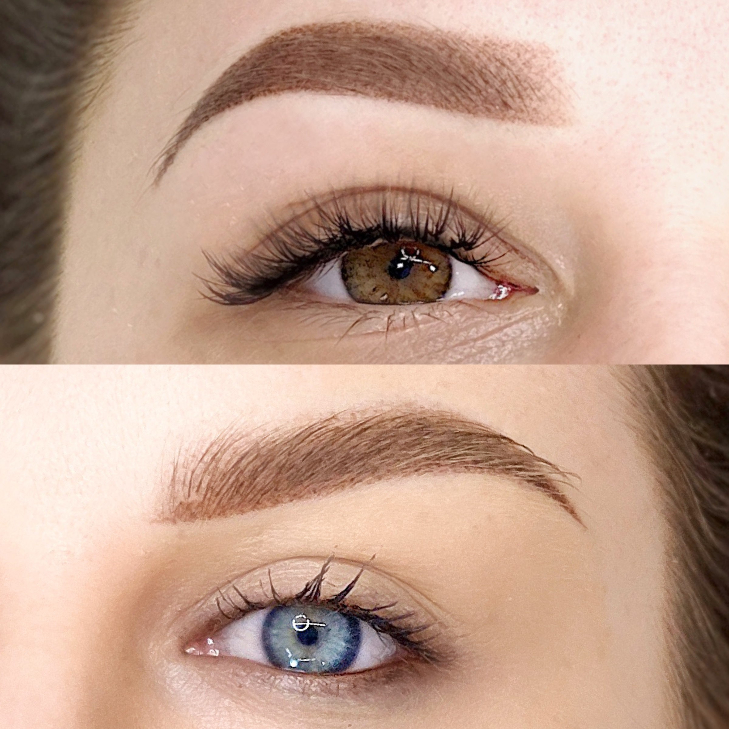 Up your skills with THE PERFECT BROW ™️W Webinar