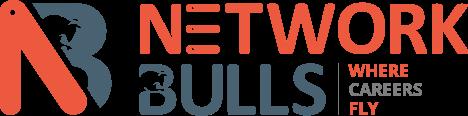 Network Bulls Logo