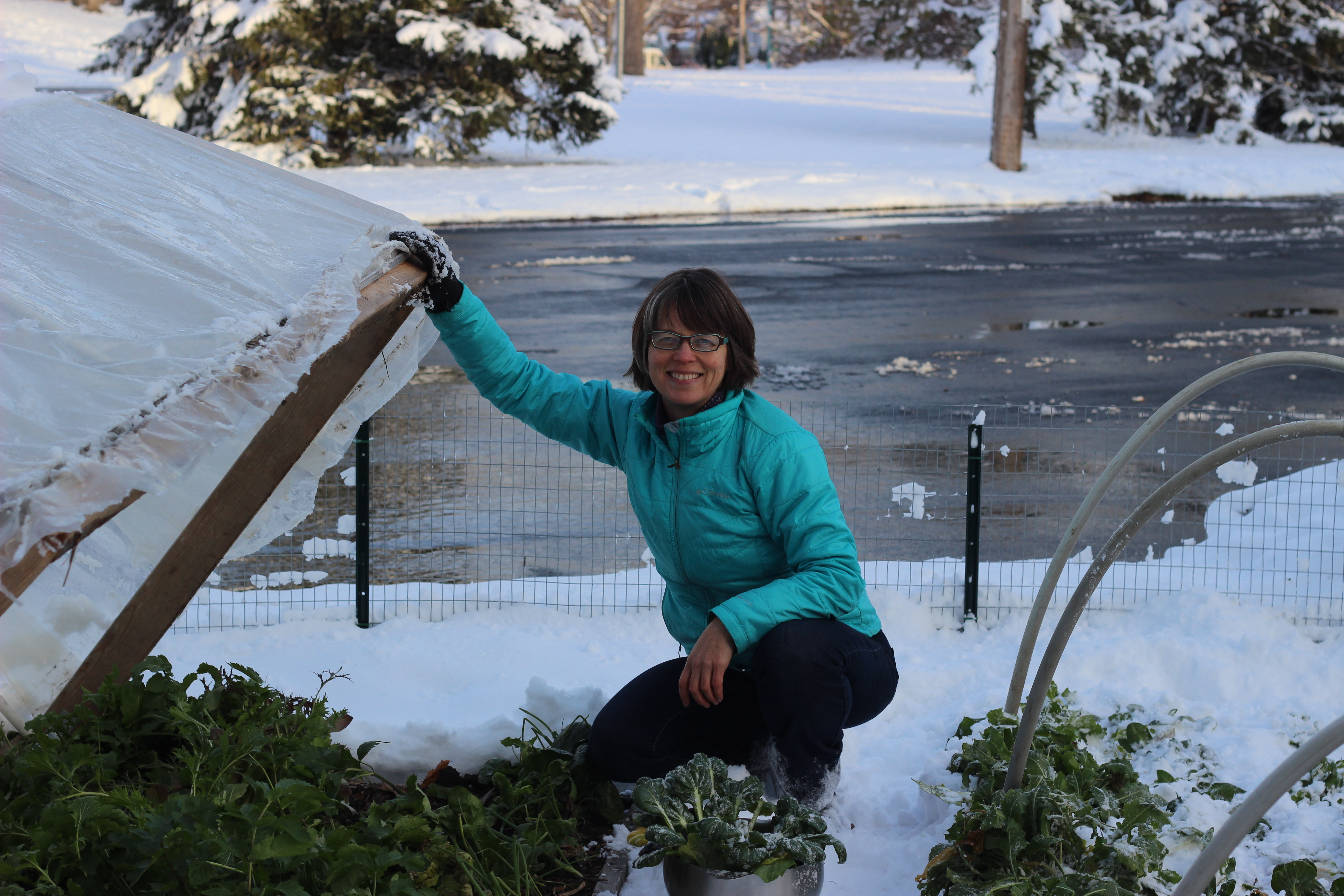 gardening in the snow